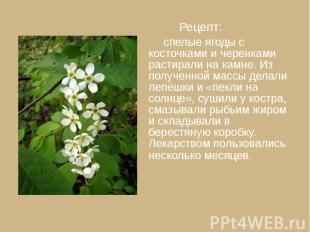 Рецепт: Рецепт: спелые ягоды с косточками и черенками растирали на камне. Из пол