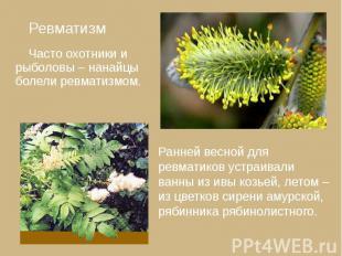 Ревматизм Ревматизм Часто охотники и рыболовы – нанайцы болели ревматизмом.