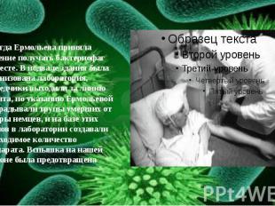 И тогда Ермольева приняла решение получать бактериофаг на месте. В подвале здани