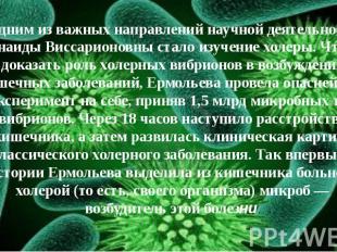 Одним из важных направлений научной деятельности Зинаиды Виссарионовны стало изу