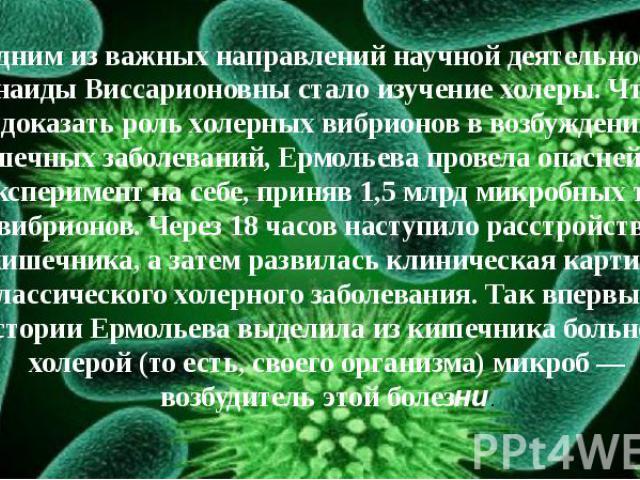 Одним из важных направлений научной деятельности Зинаиды Виссарионовны стало изучение холеры. Чтобы доказать роль холерных вибрионов в возбуждении кишечных заболеваний, Ермольева провела опаснейший эксперимент на себе, приняв 1,5 млрд микробных тел …