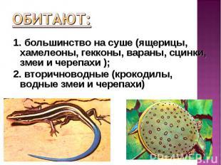 1. большинство на суше (ящерицы, хамелеоны, гекконы, вараны, сцинки, змеи и чере