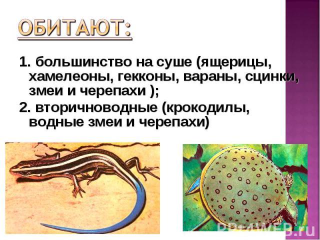 1. большинство на суше (ящерицы, хамелеоны, гекконы, вараны, сцинки, змеи и черепахи ); 1. большинство на суше (ящерицы, хамелеоны, гекконы, вараны, сцинки, змеи и черепахи ); 2. вторичноводные (крокодилы, водные змеи и черепахи)