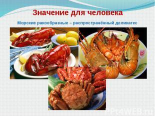 Значение для человека Морские ракообразные – распространённый деликатес
