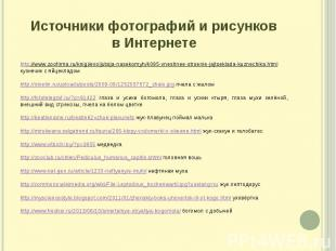 Источники фотографий и рисунков в Интернете http://www.zoofirma.ru/knigi/evoljut