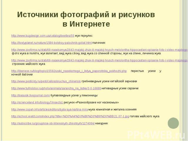 Источники фотографий и рисунков в Интернете http://www.bugdesign.com.ua/catalog/beetles/55 жук-геркулес http://livelyplanet.ru/nature/1584-bolshoy-palochnik-goliaf.html палочник http://www.zoofirma.ru/stati/69-nasekomye/2643-majskij-zhuk-ili-majskij…
