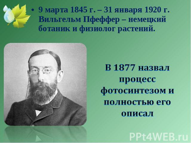 9 марта 1845 г. – 31 января 1920 г. Вильгельм Пфеффер – немецкий ботаник и физиолог растений. 9 марта 1845 г. – 31 января 1920 г. Вильгельм Пфеффер – немецкий ботаник и физиолог растений.