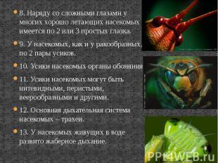 8. Наряду со сложными глазами у многих хорошо летающих насекомых имеется по 2 ил