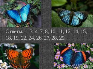 Ответы: 1, 3, 4, 7, 8, 10, 11, 12, 14, 15, 18, 19, 22, 24, 26, 27, 28, 29.
