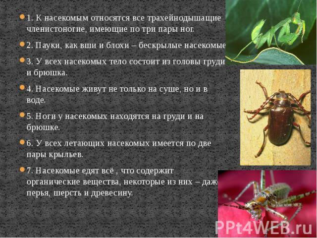 1. К насекомым относятся все трахейнодышащие членистоногие, имеющие по три пары ног. 1. К насекомым относятся все трахейнодышащие членистоногие, имеющие по три пары ног. 2. Пауки, как вши и блохи – бескрылые насекомые. 3. У всех насекомых тело состо…