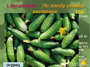 Это любимый овощной продукт нашего населения. Питательность у него невелика, но