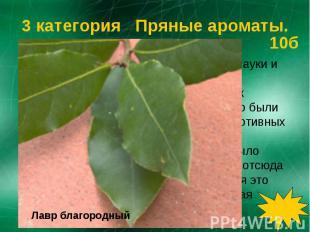 Это растение было посвящено Богу науки и искусства Аполлону. Им награждали худож