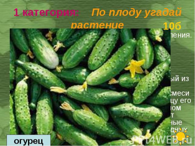 Это любимый овощной продукт нашего населения. Питательность у него невелика, но вкусовые качества его превосходны. Они обусловлены высоким содержанием минеральных солей, микроэлементов, пектиновых веществ, органических кислот и эфирных масел, возбуж…