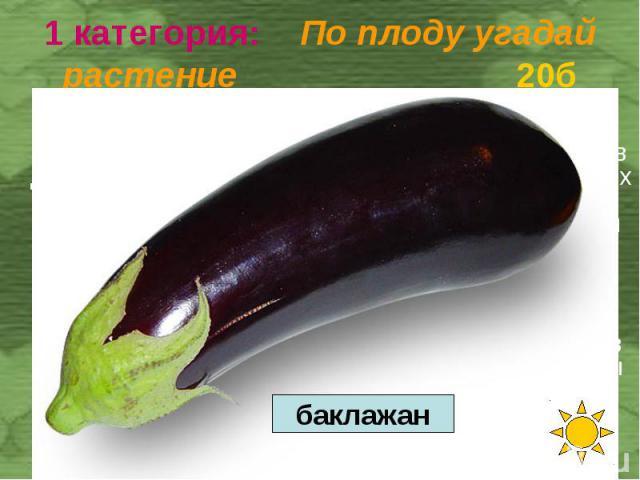 Большая ягода округлой, грушевидной или цилиндрической формы; поверхность плода матовая или глянцевая. Достигает в длину 70 см, в диаметре — 20 см; весит 0,4—1 кг. Окраска спелых плодов — от серо-зелёной до буровато-жёлтой. При полном созревании они…