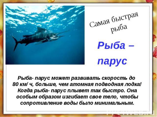 Рыба- парус может развивать скорость до 80 км/ ч, больше, чем атомная подводная лодка! Когда рыба- парус плывет так быстро. Она особым образом изгибает свое тело, чтобы сопротивление воды было минимальным.