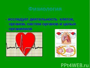 - исследует деятельность клеток, органов, систем органов и целых организмов - ис