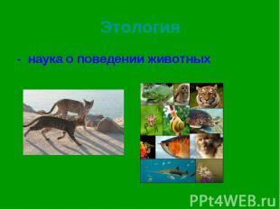- наука о поведении животных - наука о поведении животных