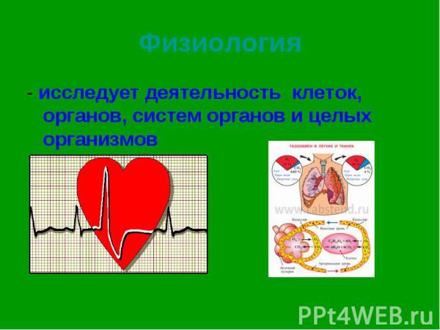- исследует деятельность клеток, органов, систем органов и целых организмов - исследует деятельность клеток, органов, систем органов и целых организмов