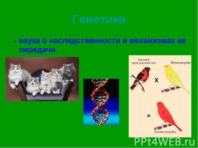 - наука о наследственности и механизмах ее передачи. - наука о наследственности и механизмах ее передачи.