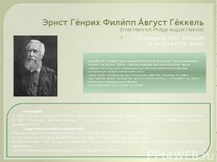 Эрнст Ге нрих Фили пп А вгуст Ге ккель Ernst Heinrich Philipp August Haeckel (16