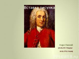 Карл Линней (23.05.1707, Росхульт 10.01.1778, Упсала)