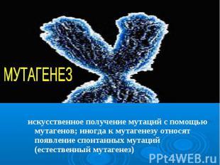 искусственное получение мутаций с помощью мутагенов; иногда к мутагенезу относят