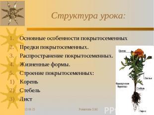 Основные особенности покрытосеменных Основные особенности покрытосеменных Предки