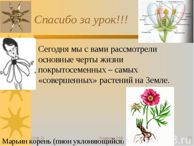 Сегодня мы с вами рассмотрели основные черты жизни покрытосеменных – самых «совершенных» растений на Земле. Сегодня мы с вами рассмотрели основные черты жизни покрытосеменных – самых «совершенных» растений на Земле.