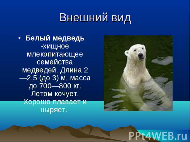 Белый медведь -хищное млекопитающее семейства медведей. Длина2—2,5 (до3)м, масса до 700—800кг. Летом кочует. Хорошо плавает и ныряет. Белый медведь -хищное млекопитающее семейства медведей. Длина2—2,5 (до3)м…