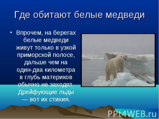 Впрочем, на берегах белые медведи живут только в узкой приморской полосе, дальше чем на один-два километра в глубь материков обычно не заходят. Дрейфующие льды — вот их стихия. Впрочем, на берегах белые медведи живут только в узкой приморской полосе…
