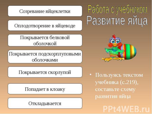 Пользуясь текстом учебника (с.219), составьте схему развития яйца Пользуясь текстом учебника (с.219), составьте схему развития яйца