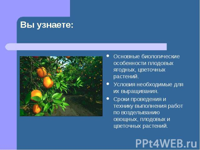 Основные биологические особенности плодовых ягодных, цветочных растений. Основные биологические особенности плодовых ягодных, цветочных растений. Условия необходимые для их выращивания. Сроки проведения и технику выполнения работ по возделыванию ово…