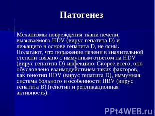 Механизмы повреждения ткани печени, вызываемого HDV (вирус гепатита D) и лежащег