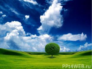 И сказал Бог: «Да будет твердь!» и стала твердь. И назвал Бог твердь небом. Это