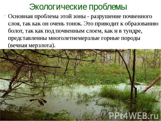 Основная проблема этой зоны - разрушение почвенного слоя, так как он очень тонок. Это приводит к образованию болот, так как под почвенным слоем, как и в тундре, представленны многолетнемерзлые горные породы (вечная мерзлота). Основная проблема этой …