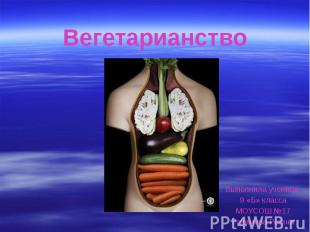 Вегетарианство Выполнила ученица 9 «Б» класса МОУСОШ №17 Рахимова Регина