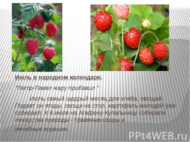 """Июль в народном календаре. """"Петр-Павел жару прибавил """"     Июль самый щедрый месяц для хлеба, овощей. Подает он ягоды, овощи на стол, картофель молодой уже собирают. К 6 июля на Агафену-Купальницу собирали лек…"""