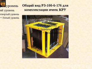 Общий вид РЗ-100-6-176 для комплектации ячеек КРУ