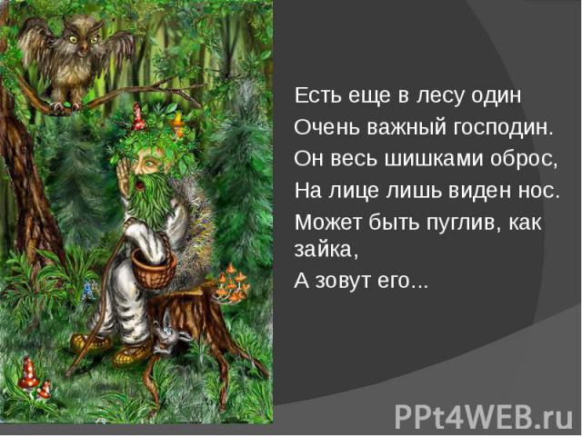Есть еще в лесу один Есть еще в лесу один Очень важный господин. Он весь шишками оброс, На лице лишь виден нос. Может быть пуглив, как зайка, А зовут его...