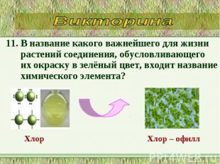 11. В название какого важнейшего для жизни растений соединения, обусловливающего