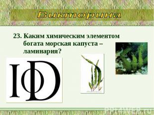 23. Каким химическим элементом богата морская капуста – ламинария? 23. Каким хим