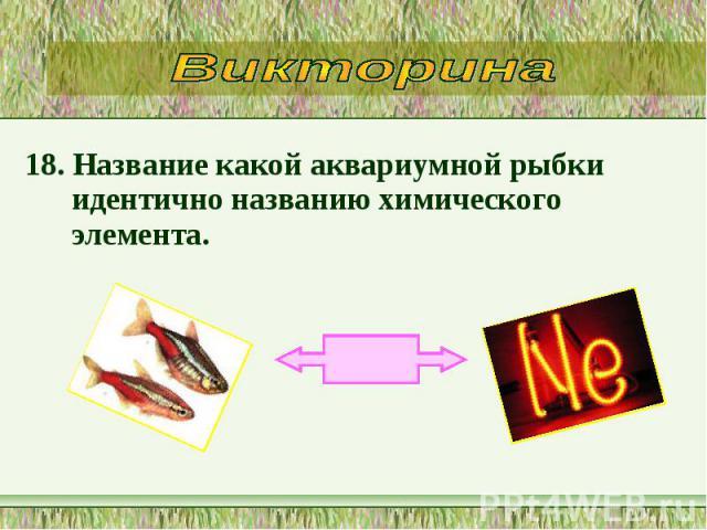18. Название какой аквариумной рыбки идентично названию химического элемента. 18. Название какой аквариумной рыбки идентично названию химического элемента.
