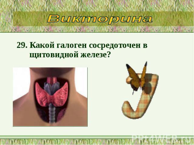 29. Какой галоген сосредоточен в щитовидной железе? 29. Какой галоген сосредоточен в щитовидной железе?