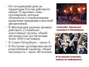 На сегодняшний день на территории России действуют свыше 35 крупных скин - групп