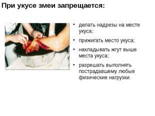 делать надрезы на месте укуса; делать надрезы на месте укуса; прижигать место ук