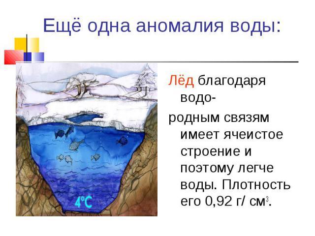 Лёд благодаря водо- Лёд благодаря водо- родным связям имеет ячеистое строение и поэтому легче воды. Плотность его 0,92 г/ см3.