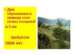 Для образования в природе слоя почвы толщиной Для образования в природе слоя поч