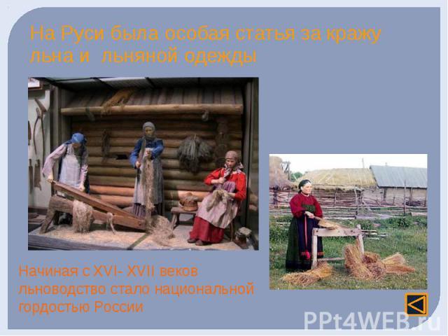 На Руси была особая статья за кражу льна и льняной одежды