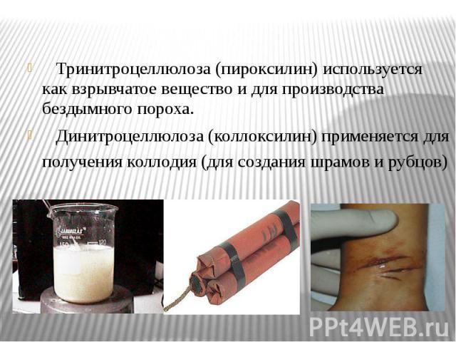 Тринитроцеллюлоза (пироксилин) используется как взрывчатое вещество и для производства бездымного пороха. Тринитроцеллюлоза (пироксилин) используется как взрывчатое вещество и для производства бездымного пороха. Динитроцеллюлоза (коллоксилин) примен…
