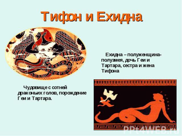 Чудовище с сотней драконьих голов, порождение Геи и Тартара. Чудовище с сотней драконьих голов, порождение Геи и Тартара.